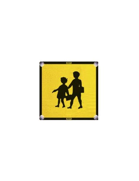 Placa Transporte Escolar